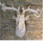 Antique White Stag Head Wall Decoration