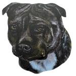 Black and White Staffordshire Bull Terrier Dog Lead Hanger
