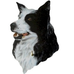 Border Collie Lead Hanger