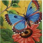 Butterfly Beauty Square Tile
