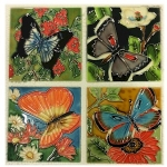 Set of Four Butterfly Beauty Coasters