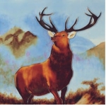Stag Square Tile