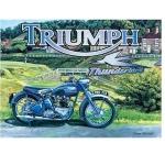 Triumph Thunderbird Motorbike  Metal Wall Sign 40 cm x 30 cm